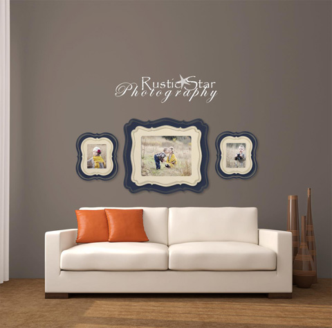 Organic Bloom Frames Wall Display Guides Amp Virtual Room